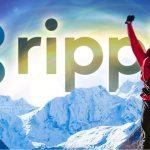 【一押しツイートまとめ】仮想通貨XRPベースの『xRapid』、利用企業は20社を突破 リップル社の銀行責任者が明かす