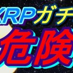 【一押しツイートまとめ】リップル(XRP)ガチホで大丈夫?仮想通貨のGoogleになるのは?
