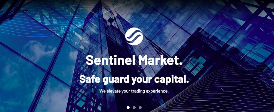 センチネルマーケットとは